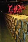 Bordeaux wine casks plus sculpture made from vines